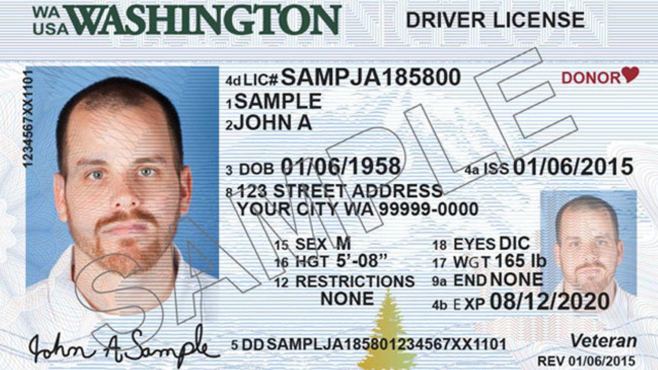 Washington State Drivers License