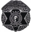 WSP Vehicle Inspection